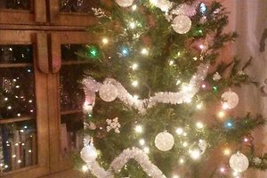 Astos B. kalėdinė dekoracija