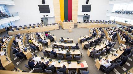 Seimo pirmininkė siūlo parlamentarų skaičiaus mažinimą spręsti referendumu