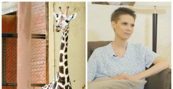 """Zoologijos sodui įsigijus naują žirafą Aistė Paškevičiūtė rėžė: """"Ši vieta turi būti uždaryta"""""""