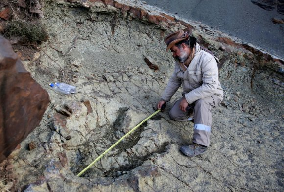 """Reuters""/""Scanpix"" nuotr./Dinozaurų pėdsakai Bolivijoje"