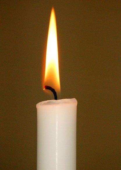Žvakė