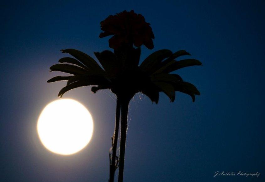 Ryškiausias Mėnulis per pastaruosius 20 metų