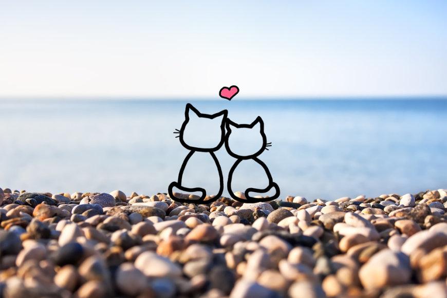 Katinėlių figūros