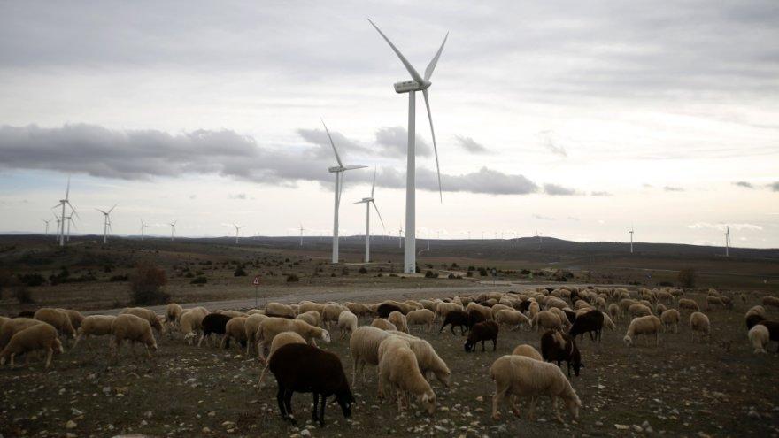 Vėjo turbinos Ispanijoje