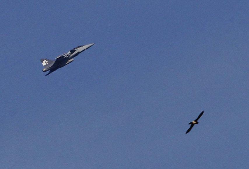 """""""Saab Gripen F"""" naikintuvas"""