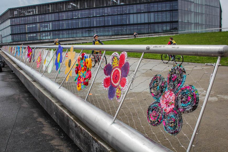 Netikėti gėlių žiedai ant Kauno tilto