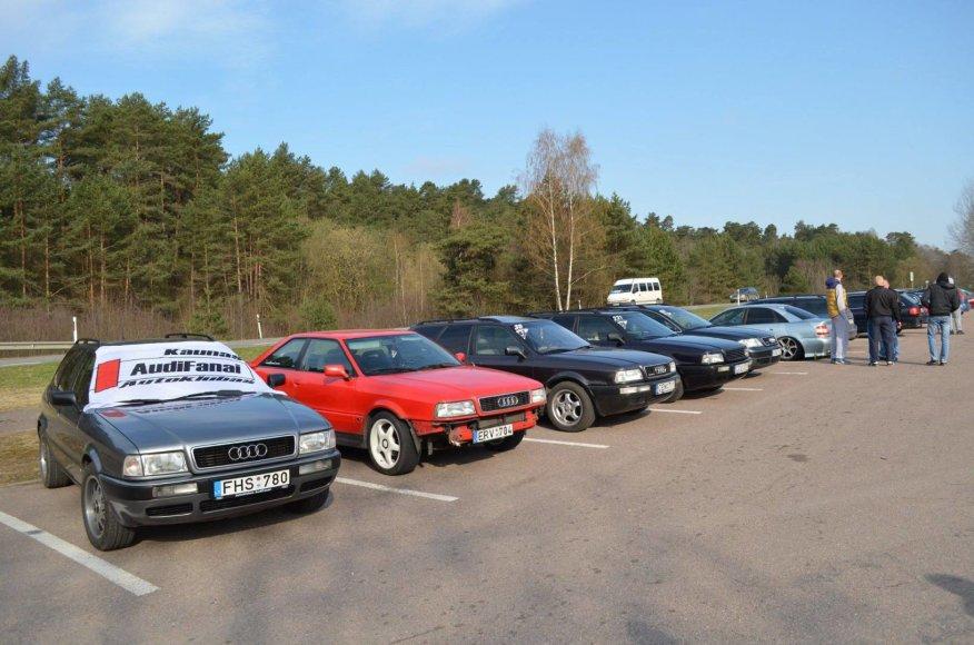 Audi fainai