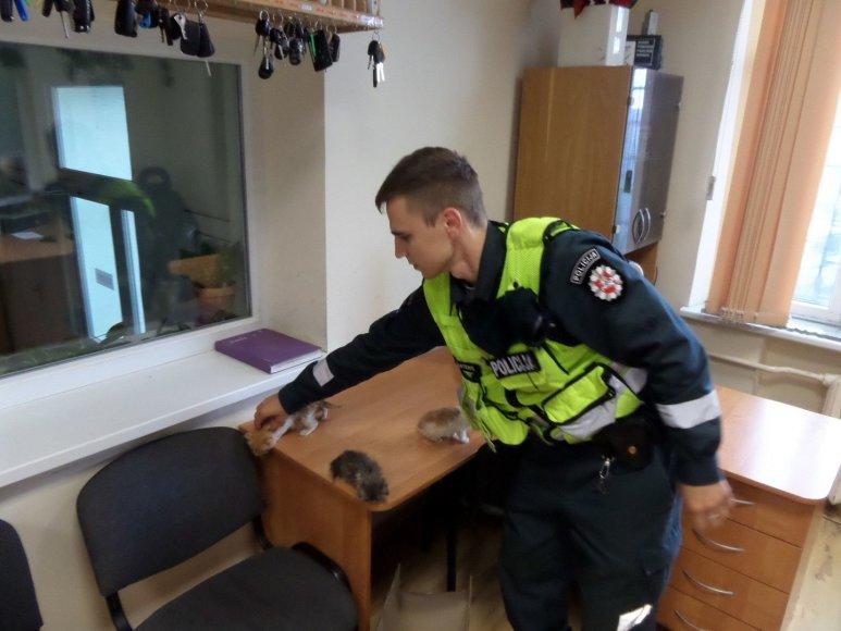 Šiaulių policininkai gelbėjo kačiukus