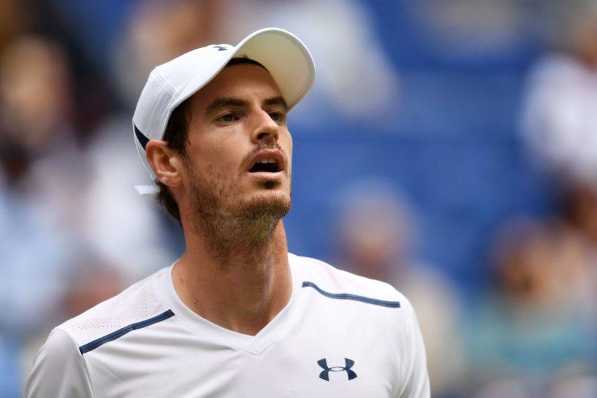 Andy Murray prieš Paolo Lorenzį