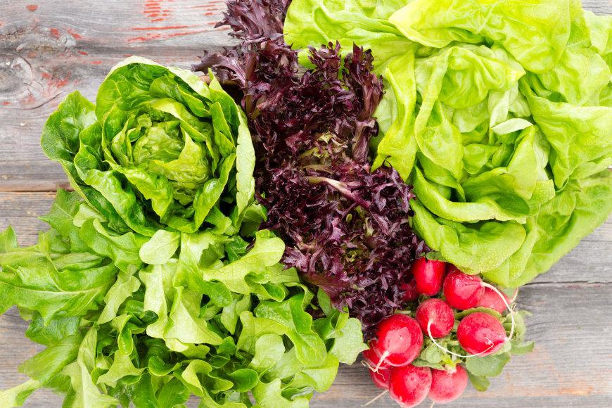 Lapinės daržovės