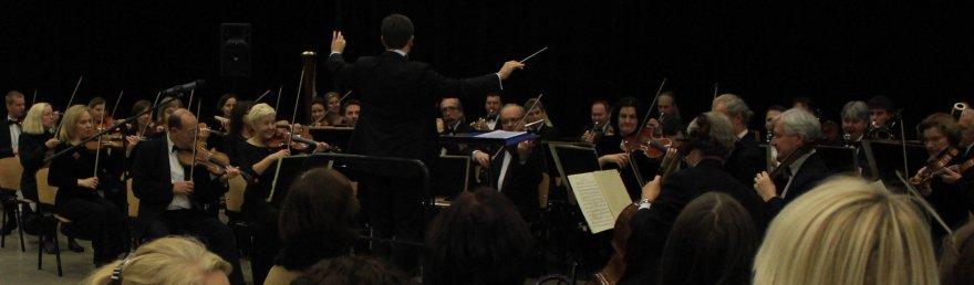 Edukacinio koncerto akimirka