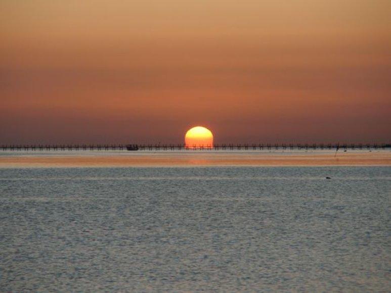 Saulėtekis prie Raudonosios jūros
