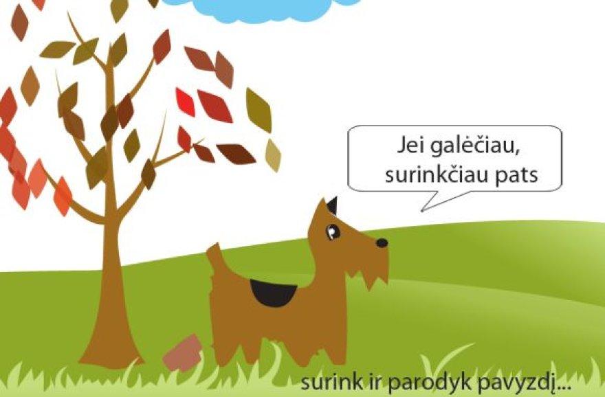 """Akcijos """"SURINK 2011"""" plakatas"""