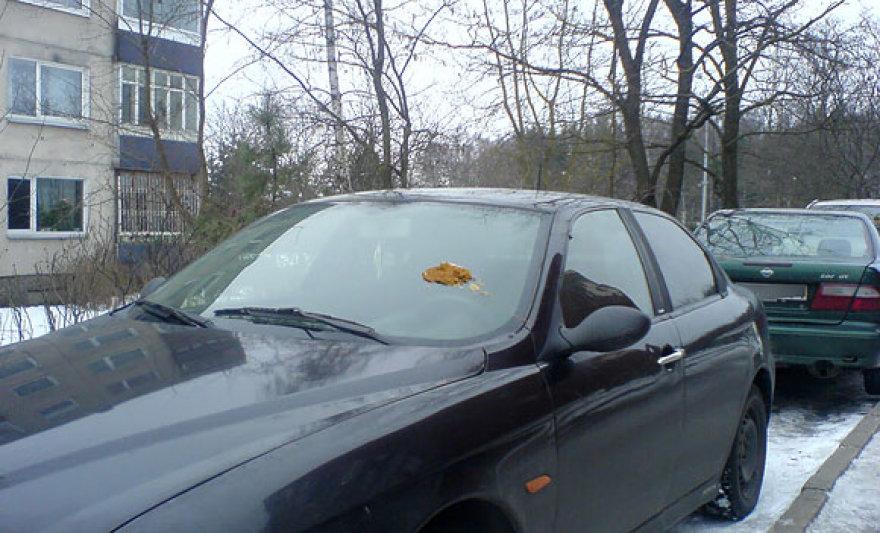 Ištepliotas automobilis