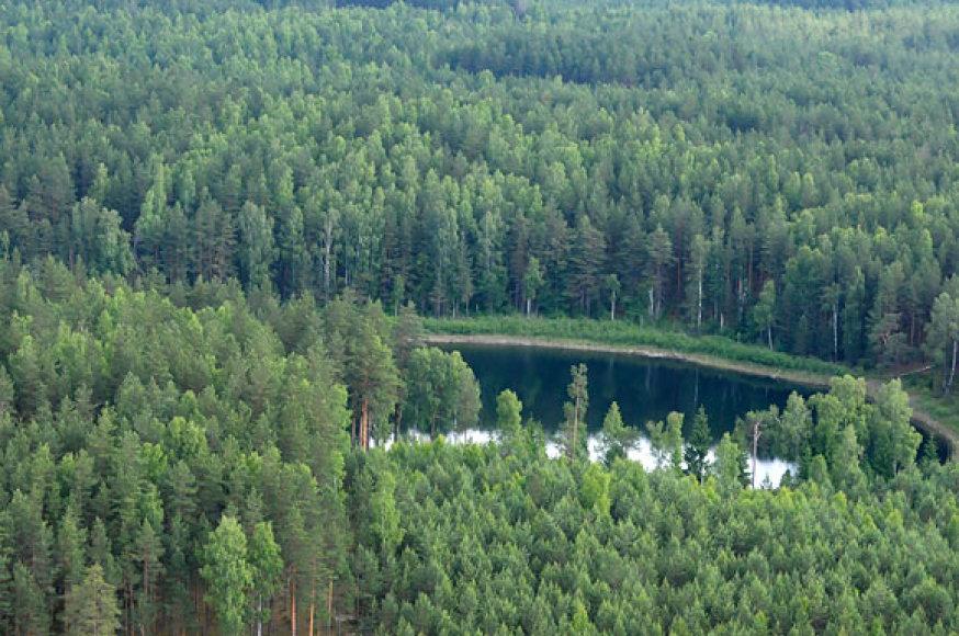 Miške pasislėpęs ežeras