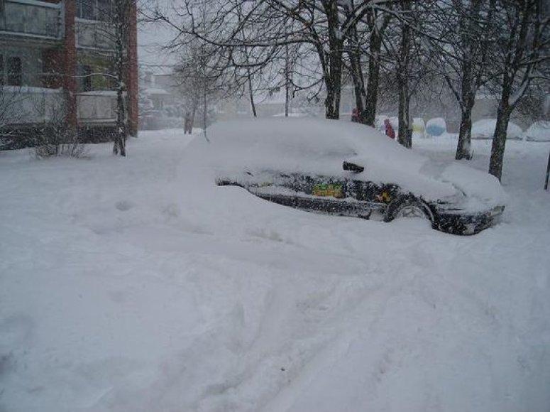 Automobilis sniege
