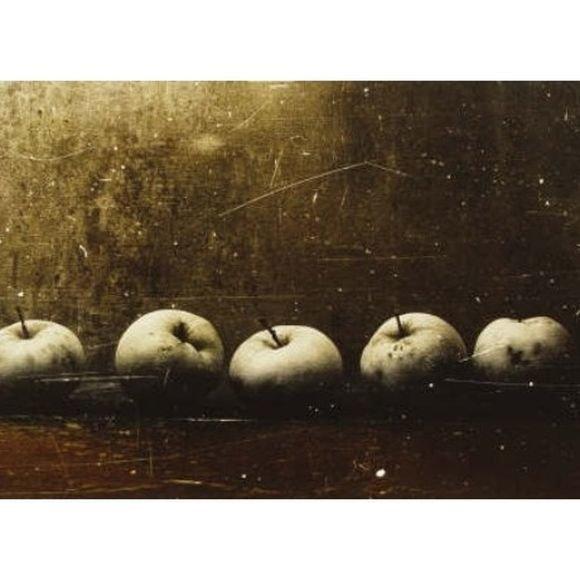 Vienas iš fotografo R.Treigio darbų.