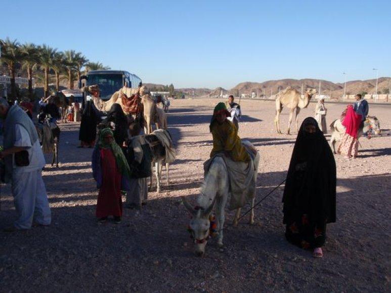 Vietiniai prašo bakšiš – pinigų o už tai pavėžina kupranugarių ar papozuoja.