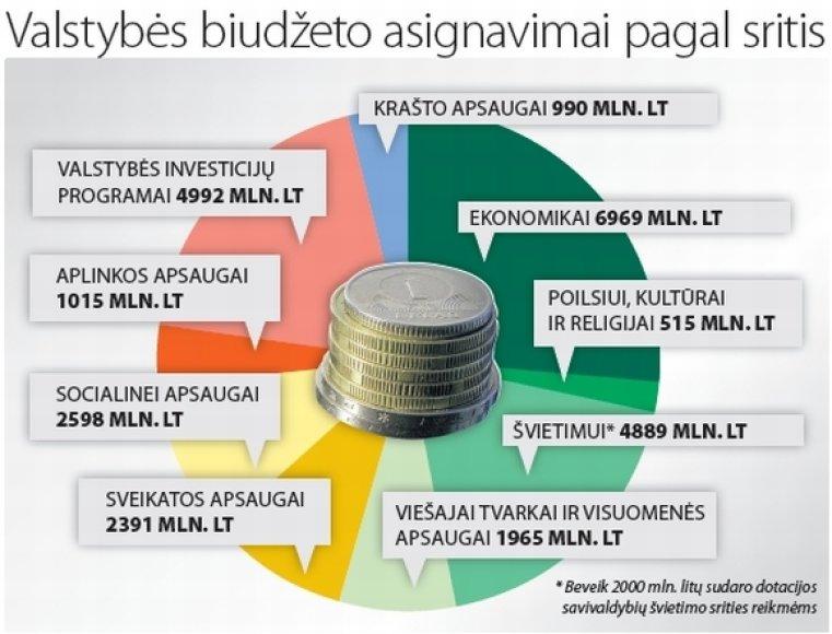 2010 metų valstybės biudžetas