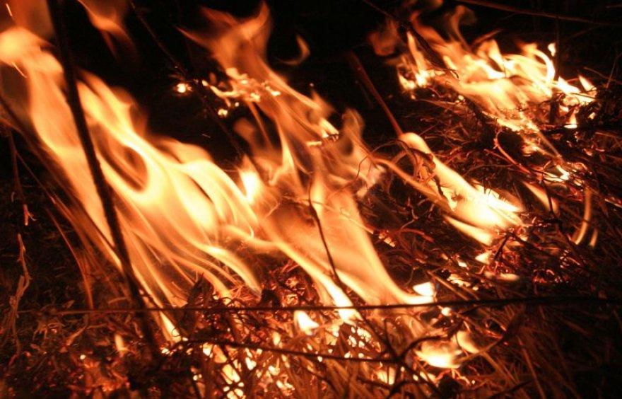 Studentai patys užgesino gaisrą.