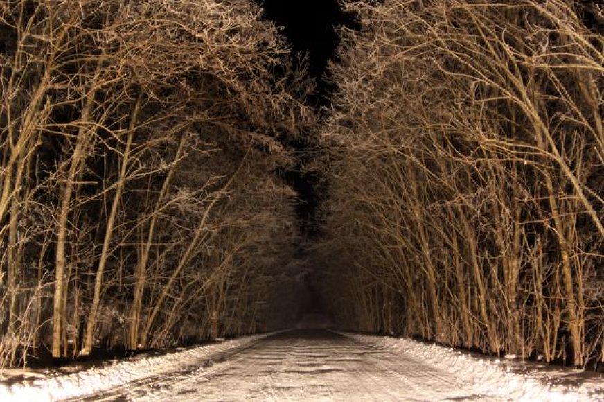 Šeštadienio naktį spustelėjo šaltukas.