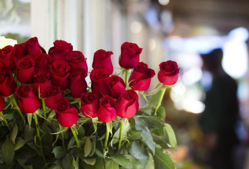 S.Konarskio gatvės gėlių turguje
