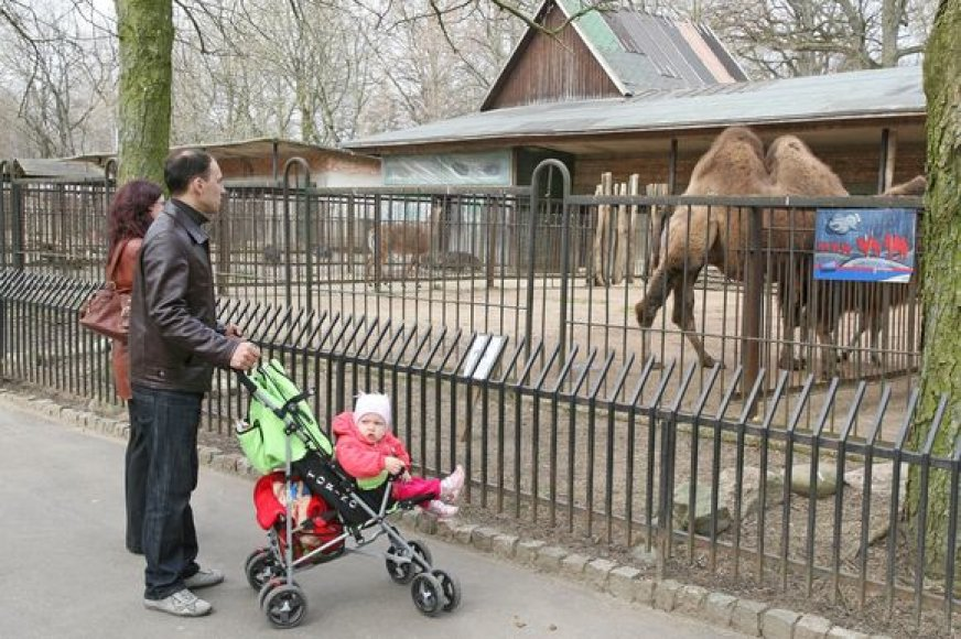 Zoologijos sodų lankytojai neturėtų nustebti, ant gyvūną pristatančios lentelės išvydę savo ar artimo žmogaus vardą. Vienus tai pralinksmina, kitus piktina.