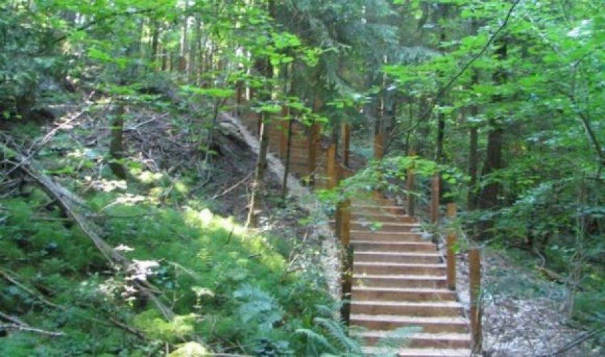 Arlaviškių botaniniame draustinyje įrengtas naujas pažintinis takas.