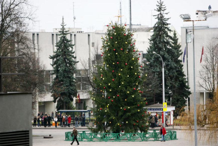 Kalėdinė eglė Vienybės aikštėje.