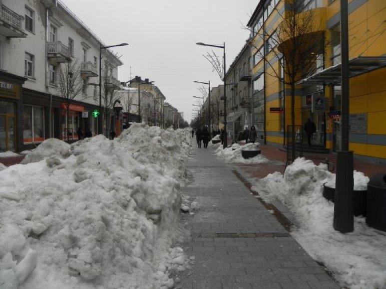 Pėsčiųjų takas - Šiaulių bulvaras.