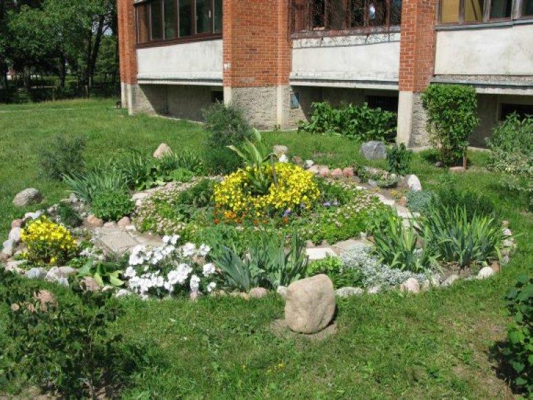 Alksnynės gatvės daugiabučio aplinka, kuria rūpinasi N.Kybartienė, išrinkta gražiausia.