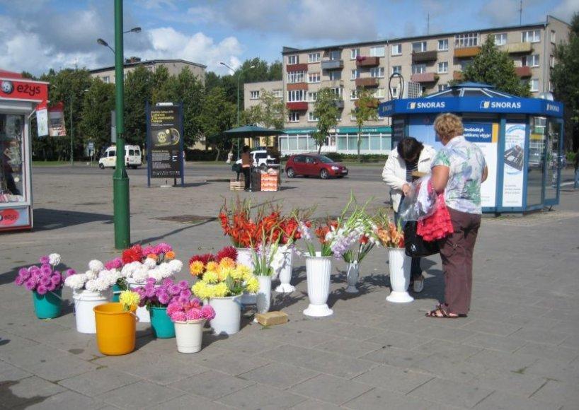 Klaipėdos turgavietėse ir miesto gatvėse kardeliai pirmadienį kainavo nuo 1.5 iki 3 litų.