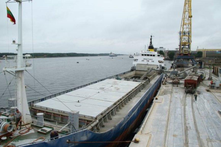 Klaipėdoje bus statoma nauja cemento gamykla.