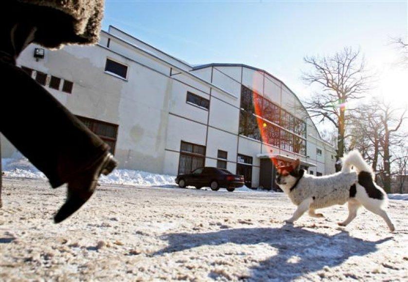 Koks likimas laukia svarbiausius klientus prarasiančios Kauno sporto halės, turėtų paaiškėti dar šiais metais.