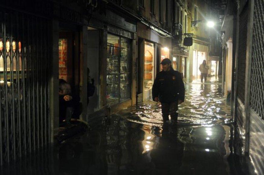 Patvinusi Venecija
