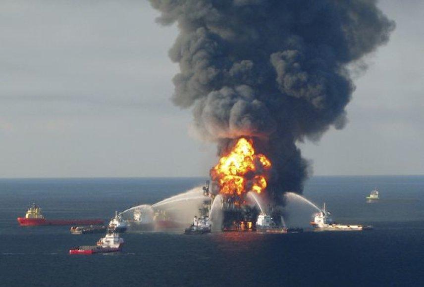 Meksikos įlankoje ekologinė katastrofa