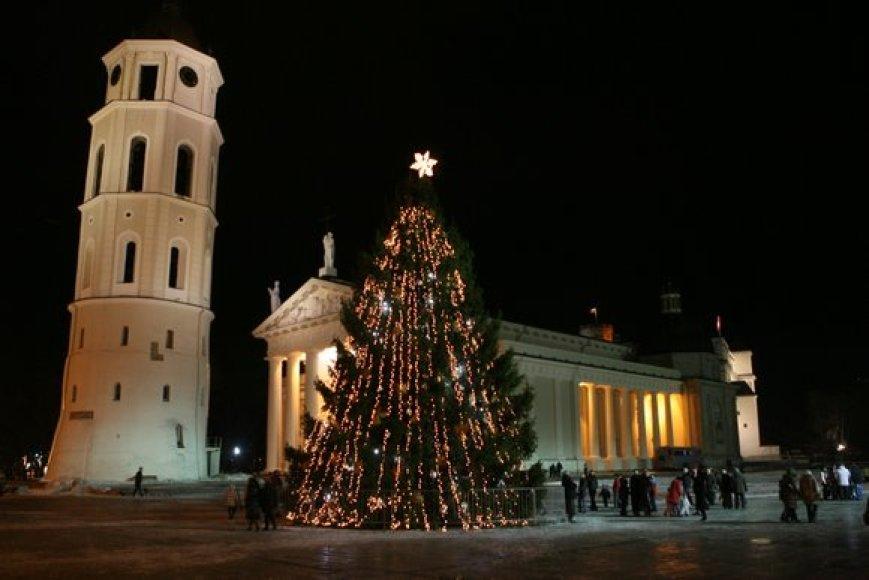 Kalėdų eglė Katedros aikštėje