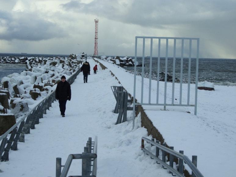 Gruodžio mėnesį nuo Baltijos molų jau galima sumeškeroti pirmąsias stintas, traukiančias į jūros lagūnas pasirengti nerštui