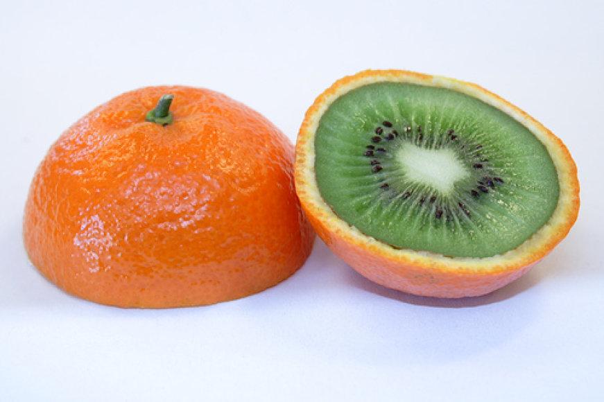 Apelkiwi Iliustracija iš Kit Seng's world tinklaraščio