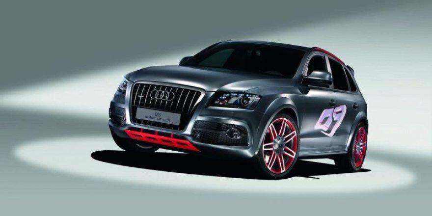 """""""Audi Q5 Custom Concept"""" koncepcija nori būti pastebėta"""