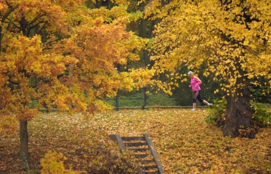 Moteris bėgioja Berlyno Tiergarteno parke
