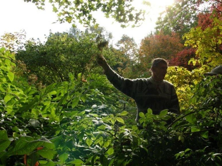Parko šeimininkas pasakoja apie augalus