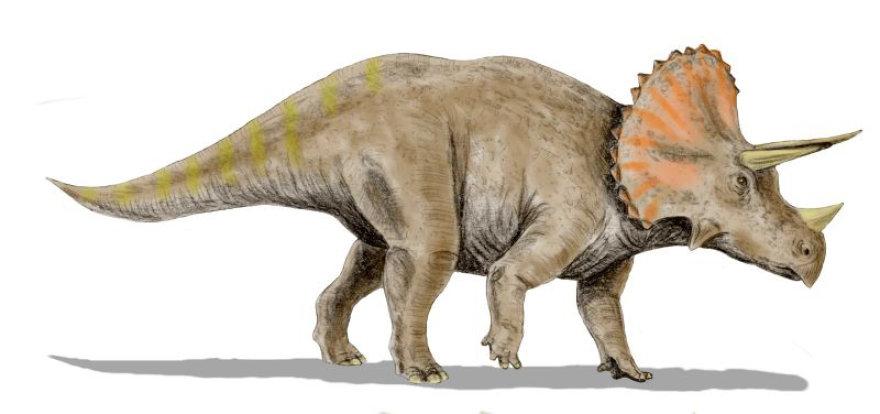 Dinozauru rusys