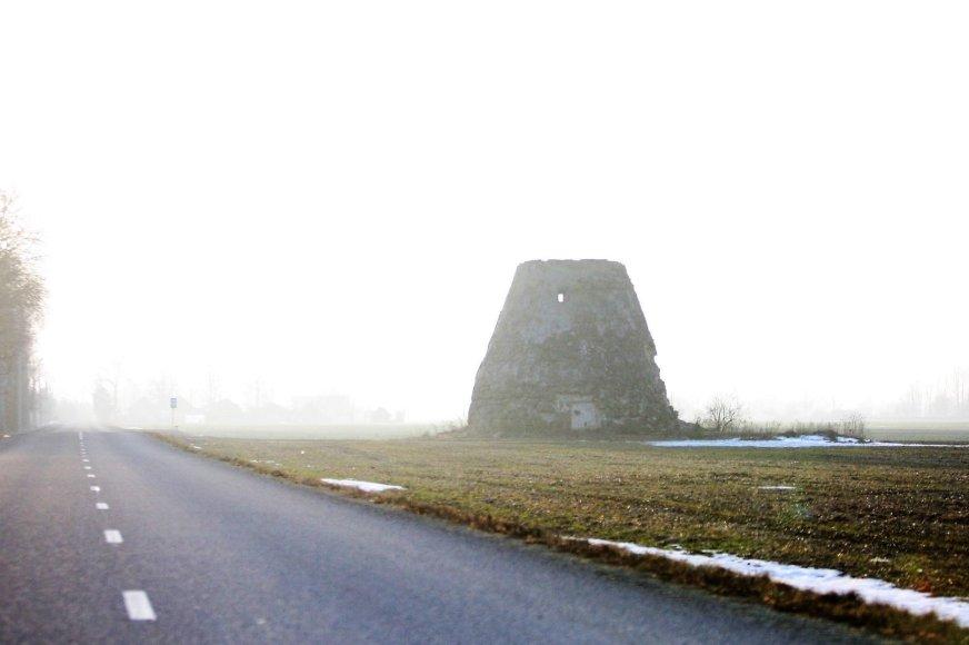 Alvydo Januševičiaus nuotr./Mirštantys vėjo malūnai