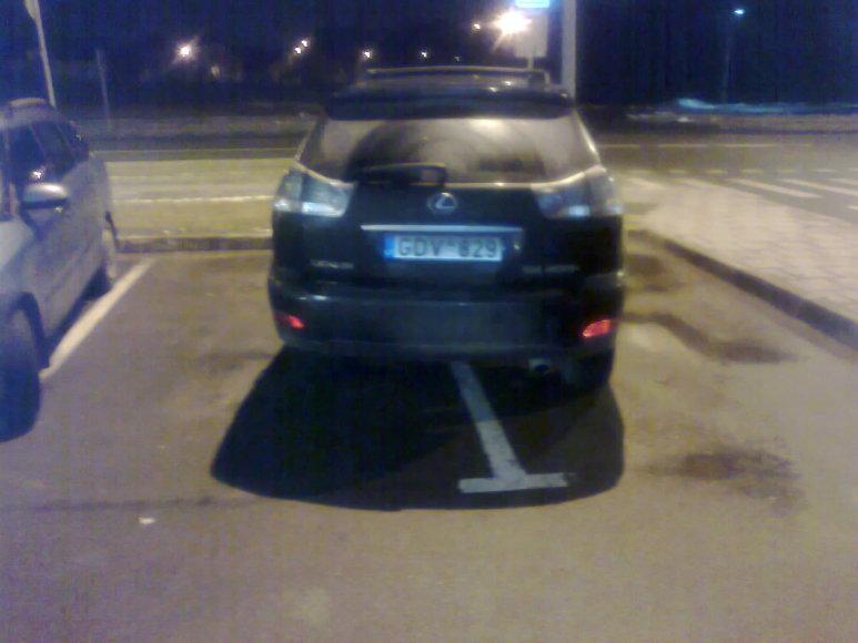 Puikus parkavimas 1