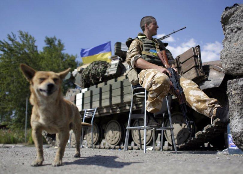 Ukrainos karys Donecko srityje