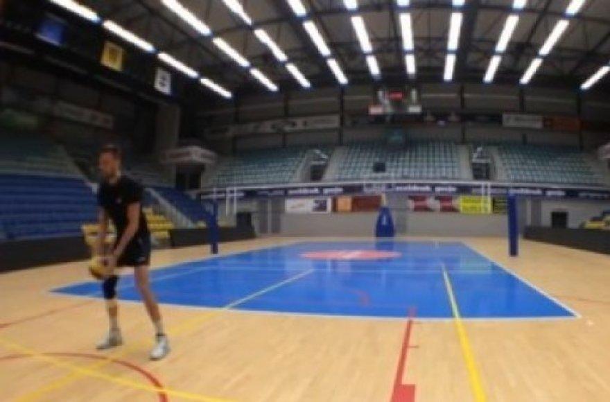 Belgijos tinklininkų krepšinio šou