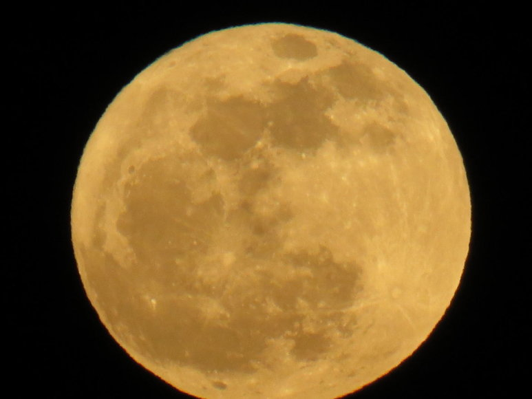 Janinos Ž. mėnulio pilnatis
