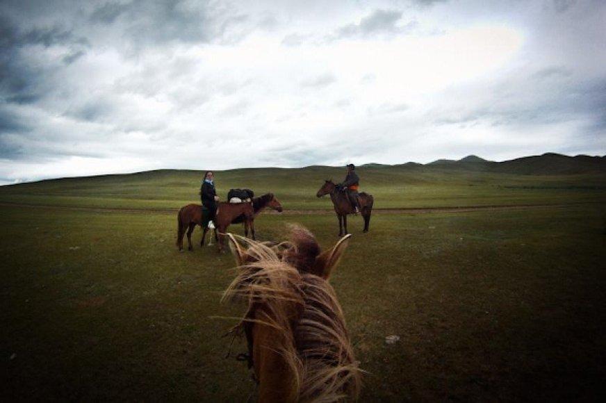 Vėl į Mongolijos stepes