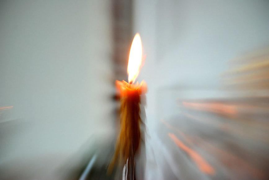 Žvakutė